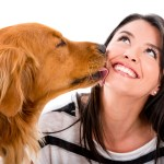 Dog kissing a woman