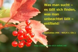 Was man sucht – es läßt sich finden, was man unbeachtet läßt – entflieht!  Sophokles (496 - 405/6 v. Chr.)