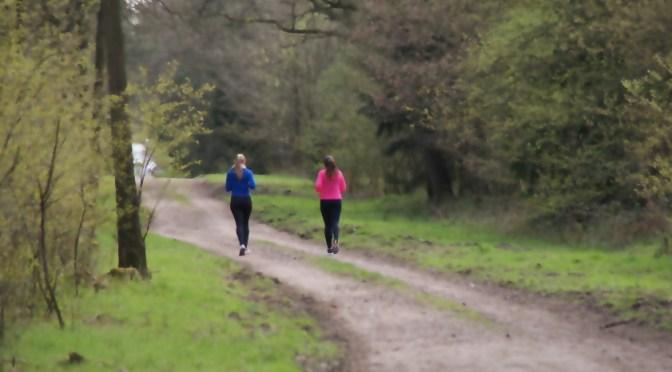 Sieben Gründe für die tägliche Bewegung in der Natur