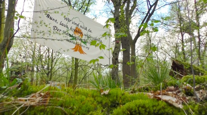 Hambacher Forst retten