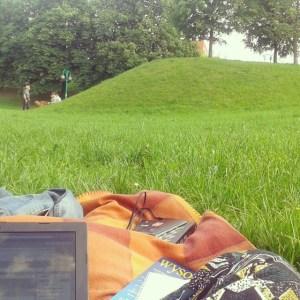 Popołudnie w parku Fiolka Endorfin