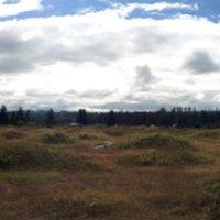 Mima Mounts near Maytown
