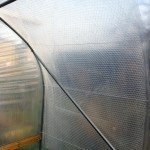 Bubble wrap insulation in a Polytunnel