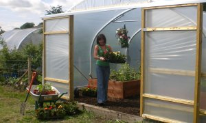 May in a Polytunnel……
