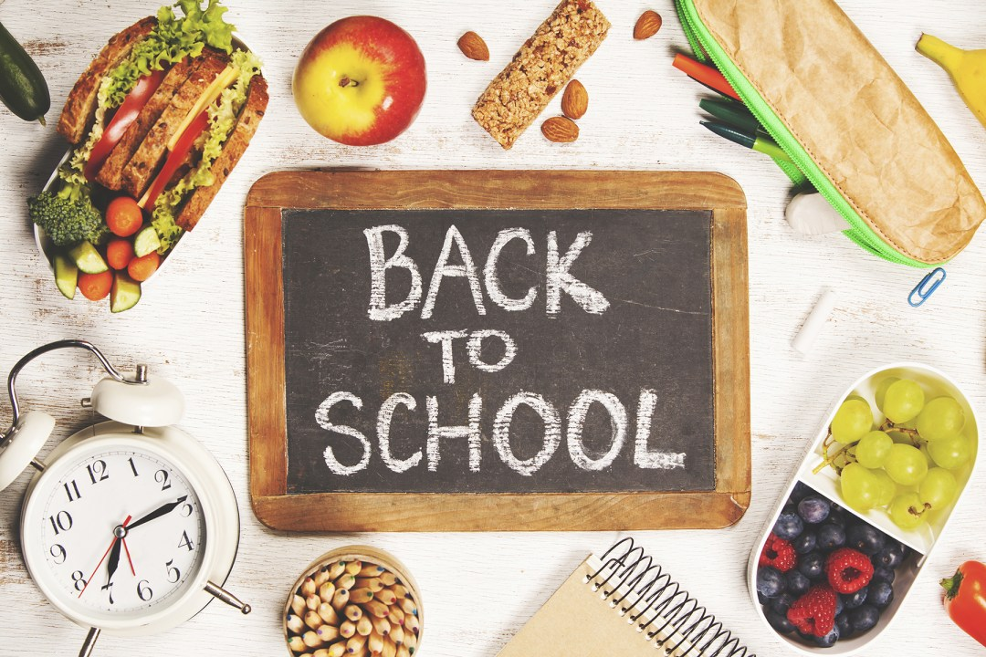 Habit Hacks For Food And Snacks For Back To School Flora Healthy