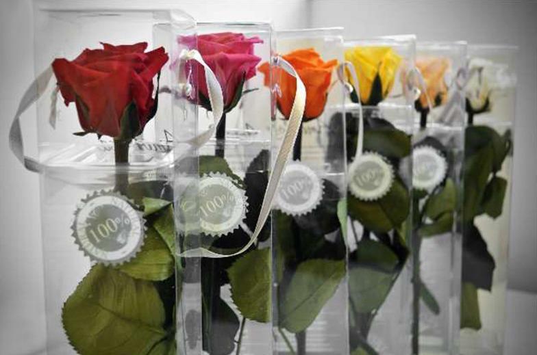 Rosas Eternas o Preservadas en Patricia López Diseño Floral - Floristería en Añover de Tajo