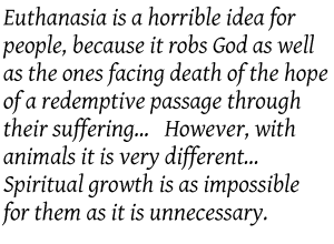 Euthanasia for Pets
