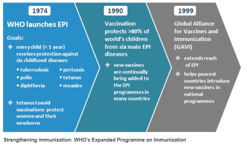History of vaccine development