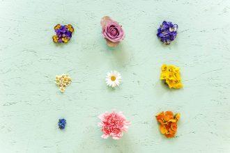 7 fleurs comestibles pour fêter le printemps