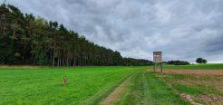 Thannhaeuser Rundweg20191003_153018