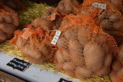 Kartoffeln aus Wassermungenau   Foto: Vera Held
