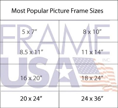 picture frame sizes most