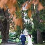 Hochzeitsfotografie in Innsbruck - 00026