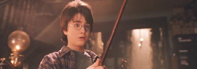 ハリーの杖