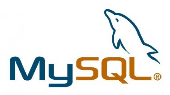 [MySQL] 특정 COLUMN을 제외하고 SELECT/INSERT하는 방법