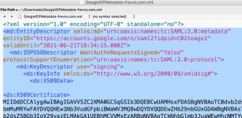 IDP Metadata (paste without XML Prolog)