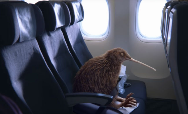 Vidéo Air New Zealand Pete le Kiwi