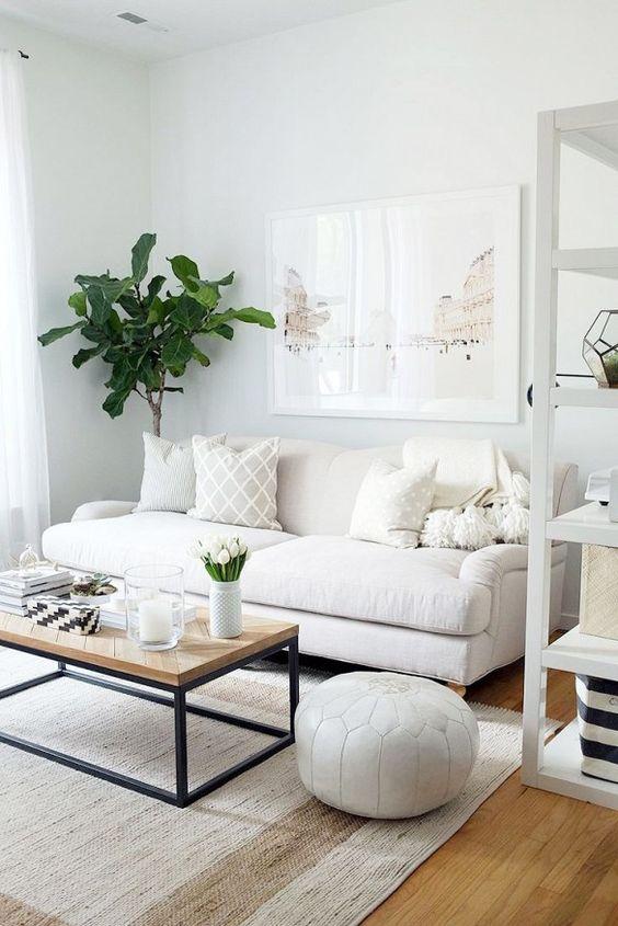 Living Room Decorating Ideas   Plant Decor