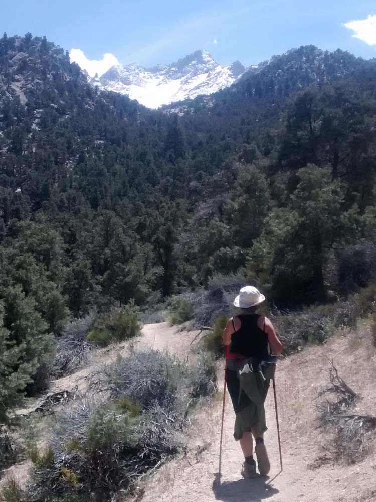 Whitney Portal Trail, from Lone Pine Campground