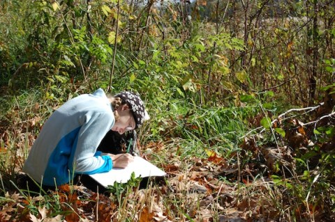 Students return to their plots each month throughout the year, recording the changes they observe.