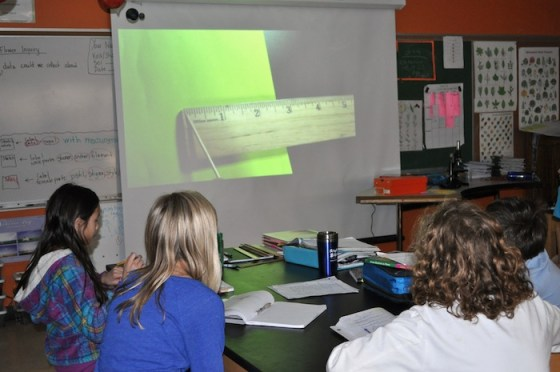 Fifth graders learn how to measure in fractions of an inch as they prepare to dissect their flowers in science.