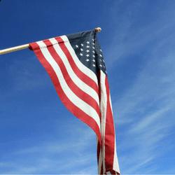 Create a flag subscription service to raise money