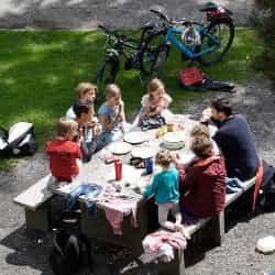 Organize a picnic as a fundraising idea.