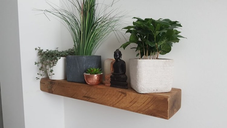 white wall with rustic chunky wooden floating shelf and houseplants and buddha