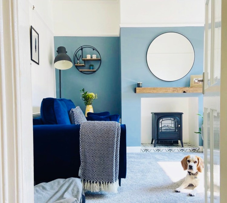 Blue living room with beagle dog