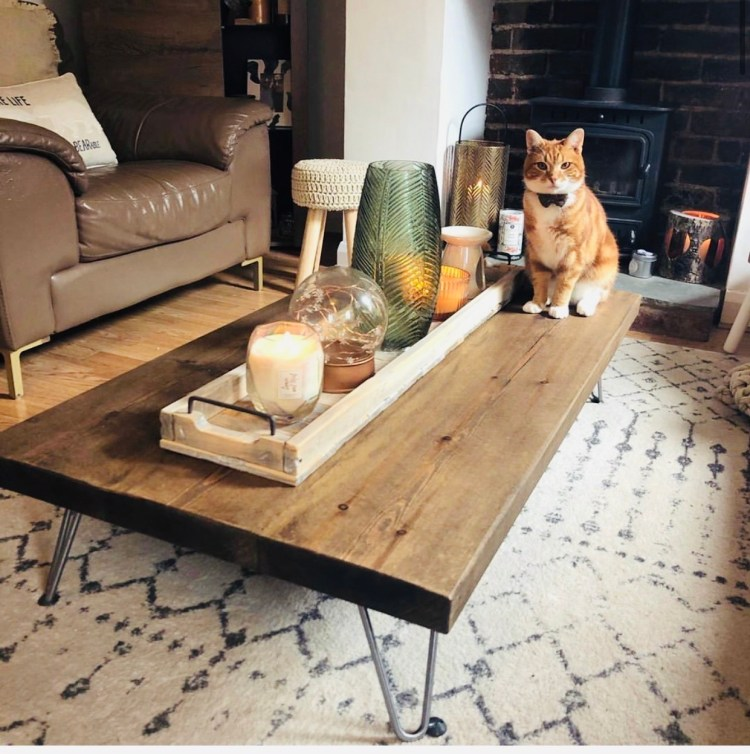 tabby cat with bow tie sitting on hairpin leg coffee table.