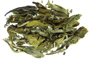 White Thunder Mint White Tea