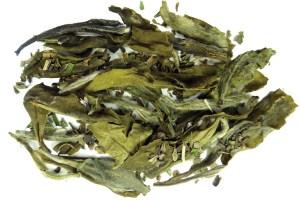 White Thunder Mint White Tea