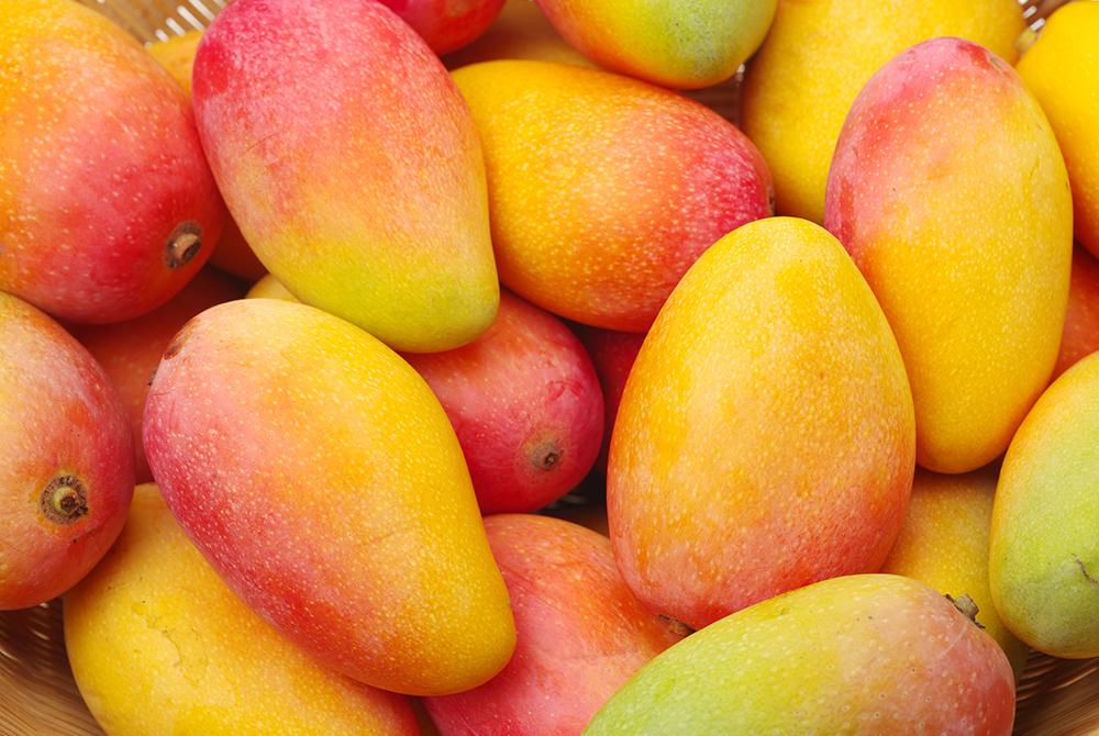 Mango Teas
