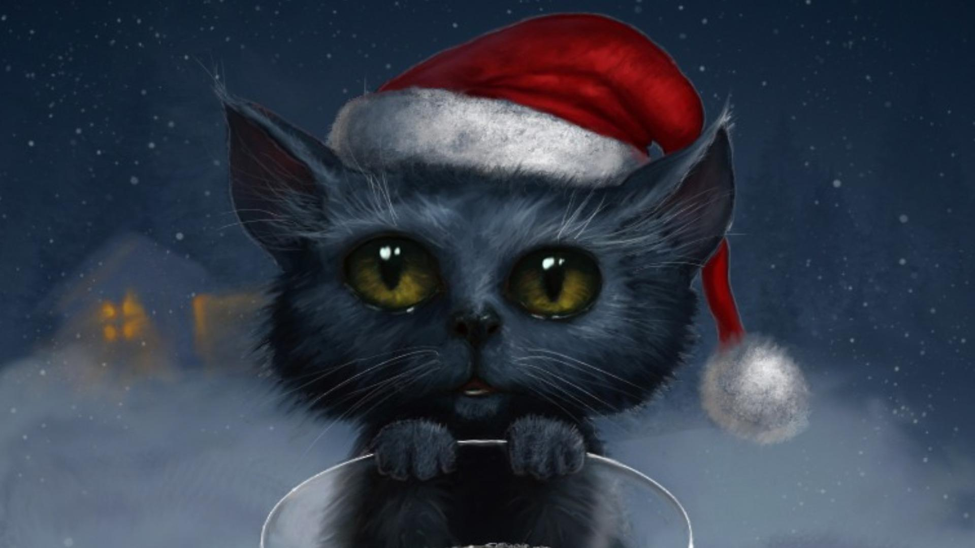 Real Cat Backgrounds Free