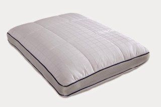 http://www.futonland.com/index/page/product/product_id/19893/category_id/637/product_name/Energize+Pillow+by+Mlily