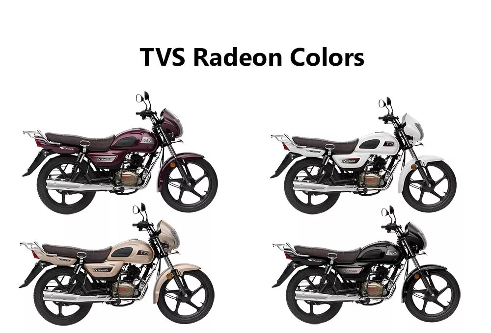 Fastest Frog Play Championships—Tvs Radeon Bike Price In
