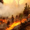 Stay Prepared during Wildfire Season