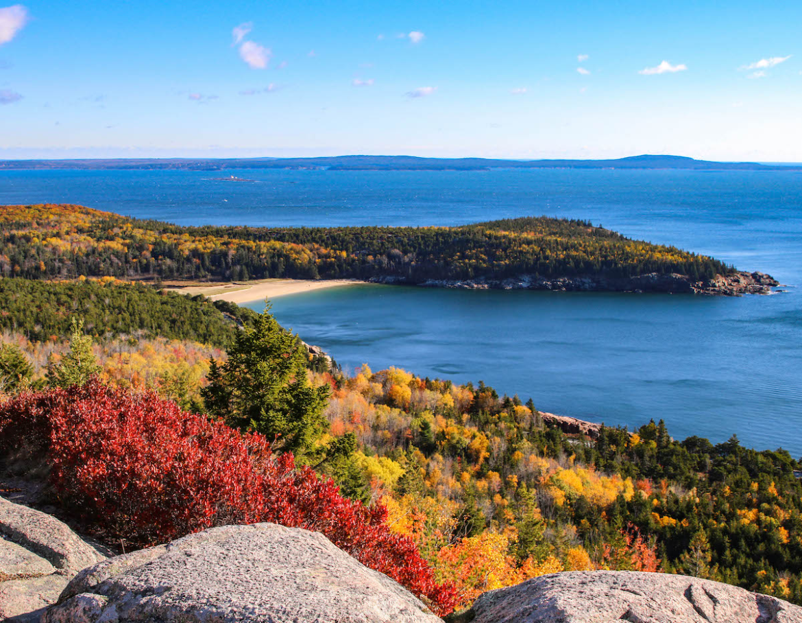 Overlook of Maine's Atlantic coast with fall foliage in the foreground