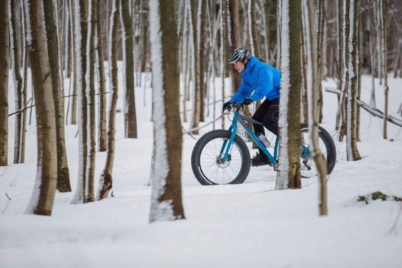 A fat biker rides through a snowy forest.