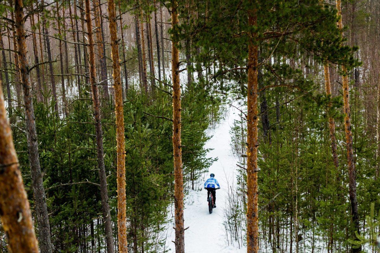 A fat biker rides over a snowy trail through a forest.