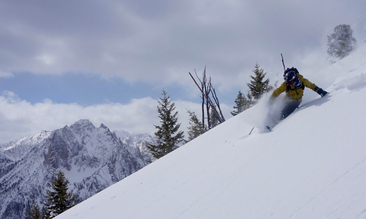 A skier with one leg skis down a slope.