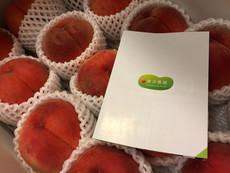 アイキャッチ画像:美味しい桃からサービスデザインに思いを馳せる