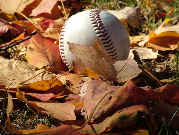 fall-baseball-1566203