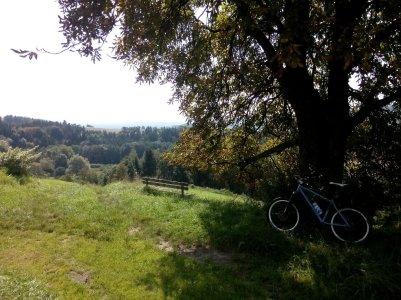 Fürstberg abwärts in Richtung Stubenberg