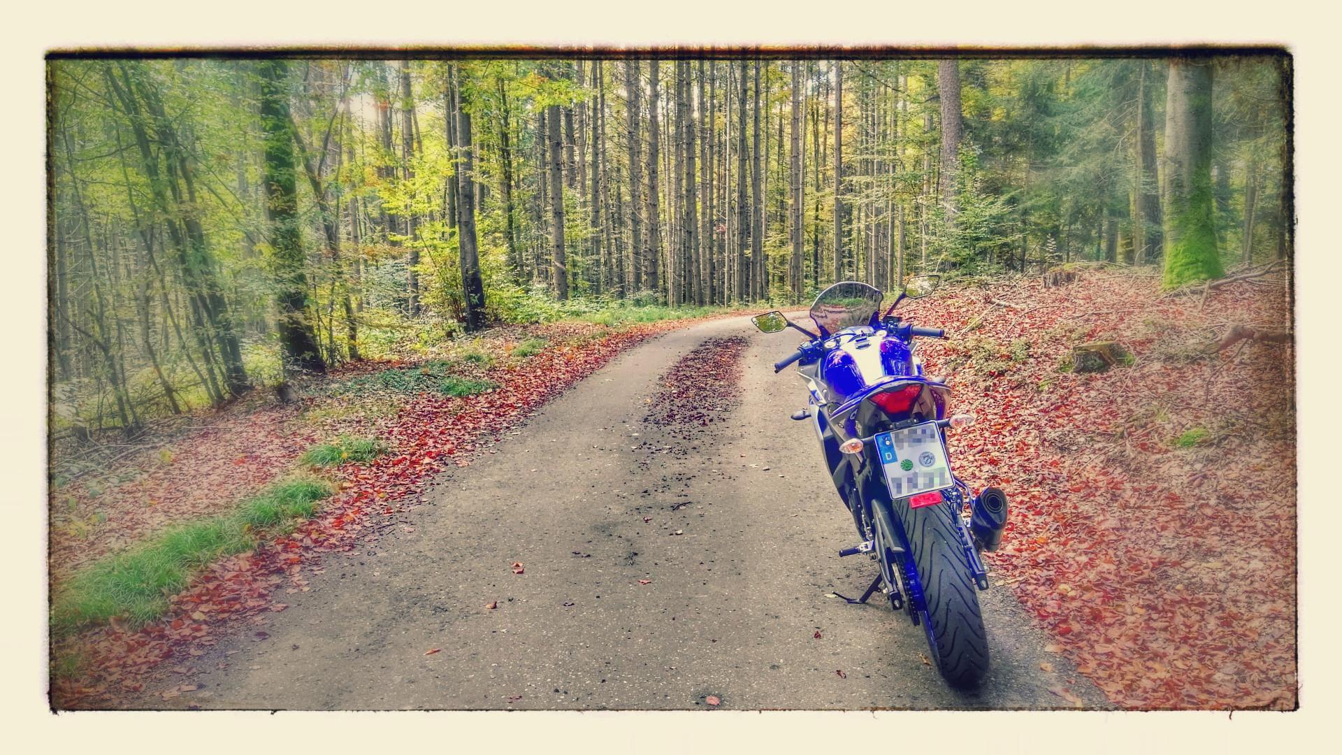 Herbstrunde mit Yamaha YZF-R3
