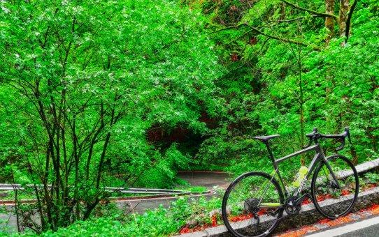 Waldbühne Schildthurn Runde