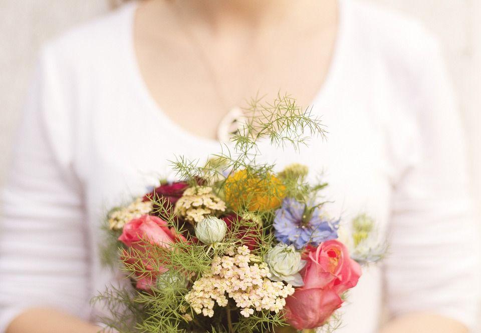 plantas y flores que resultan excelentes para obsequiar