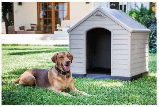 Caseta para perros pvc