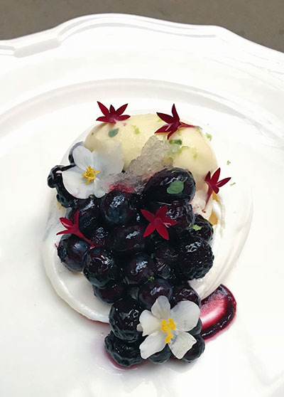 Berry and gelato dessert