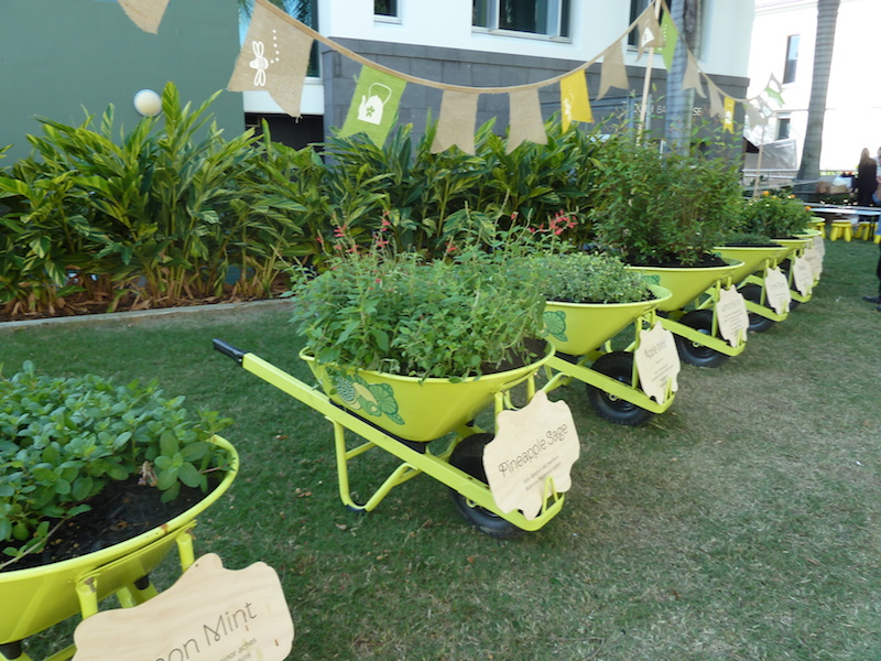 30 Herb Garden Ideas To Spice Up Your Life